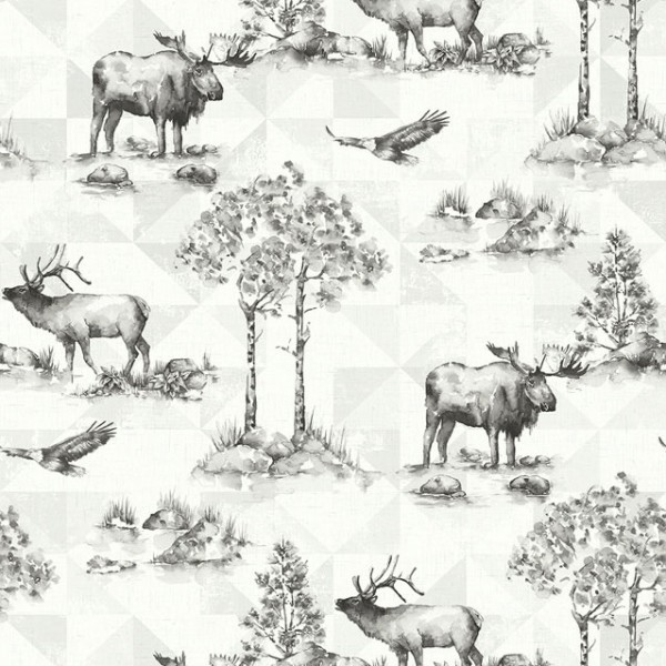 Design Wallcoverings Alaska Moose-631563