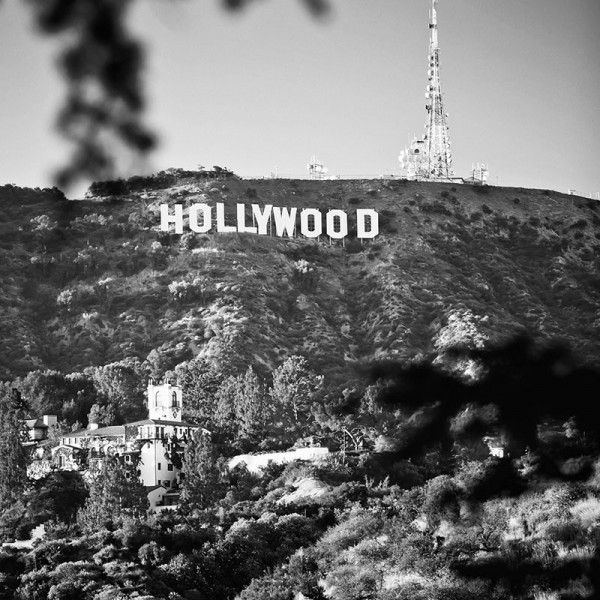 Hollywood-CC3820