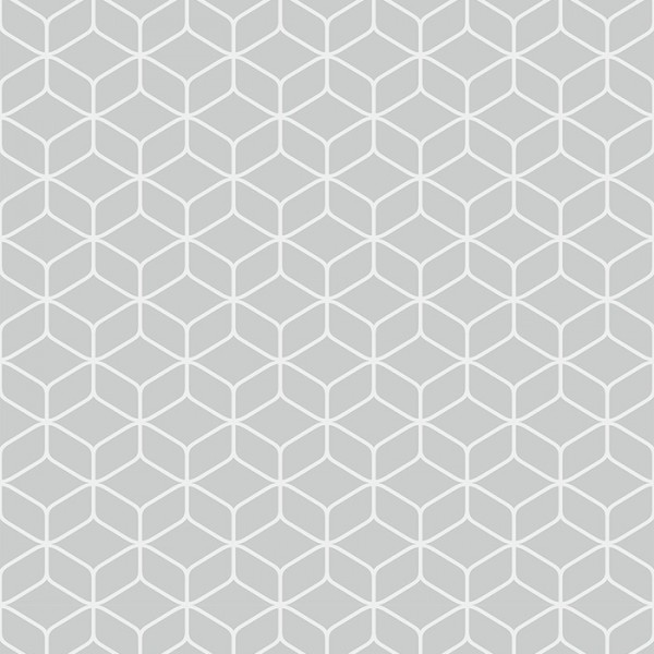Tapeten Grau Hexagon Geometric-300981