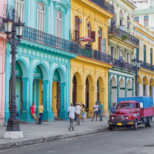 Colorful Havana-25526B